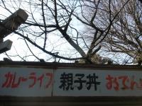 R0017081.JPG